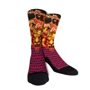 lebron the king socks